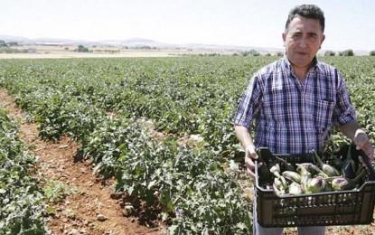"""La Berenjena """"De Almagro"""" pedirá ayudas al gobierno regional para salvaguardar el cultivo de nuestra berenjena autóctona"""