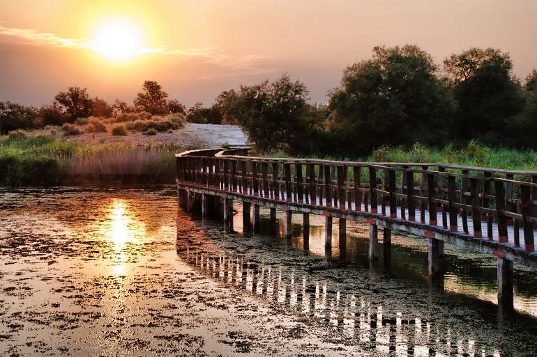 La Junta reclama al gobierno central la gestión de los parques naturales de Las Tablas de Daimiel y Cabañeros