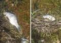Ciudad Real: Aparecen muertos varias decenas de peces en el pantano de El Vicario