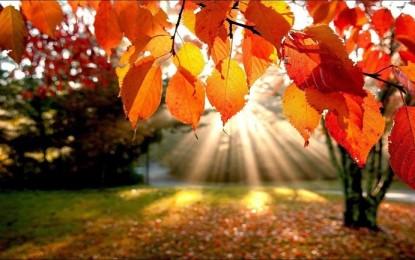 Este domingo comienza el otoño, estación climática que terminará el próximo 21 de diciembre