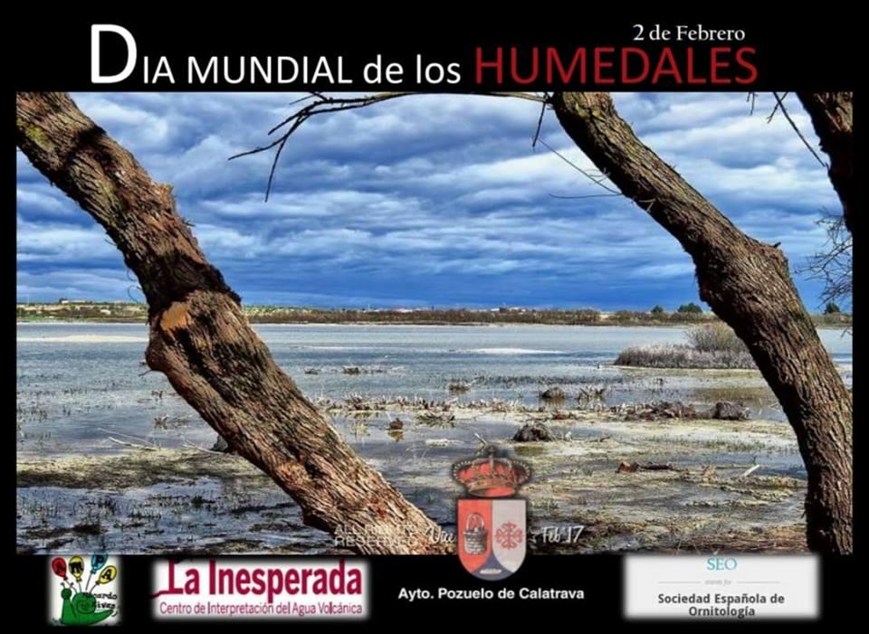 Pozuelo de Calatrava celebrará el Día Mundial de los Humedales con un anillamiento de aves
