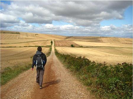 Caminante, son tus huellas el camino y nada más; Caminante, no hay camino, se hace camino al andar.