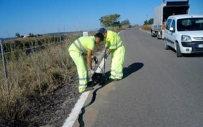 El Gobierno regional adquiere 27 nuevas furgonetas para renovar parte de la flota de las Brigadas de Conservación de Carreteras de Castilla-La Mancha