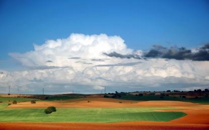 Las cabañuelas vaticinan que 2018 será un año de extrema sequía y que sólo lloverá algo en enero