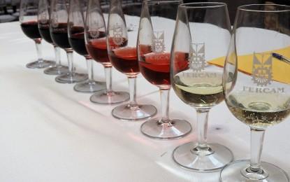 Manzanares: Los vinos blancos destacan entre las 110 muestras del 48 Concurso de Vino de Fercam