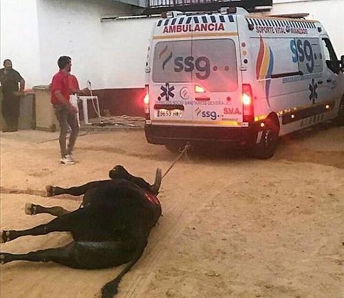Arrastre de un toro con una ambulancia en un festejo taurino de la Feria y Fiestas 2018 de Valdepeñas
