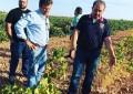 VOX reclama al Gobierno un plan nacional de contingencias que palíe los efectos devastadores de la sequía