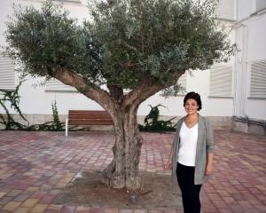 Ciudad Real: Abierto al público el parque de Manuel Marín en el antiguo patio del edificio de Sanidad
