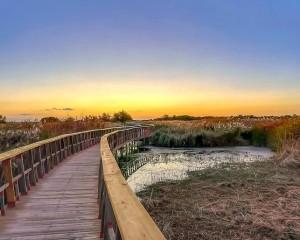 El Gobierno regional publica la concesión de ayudas por más de 716.000 euros a los nueve ayuntamientos de áreas de influencia socioeconómica de los Parques Nacionales, Cabañeros y Las Tablas de Daimiel