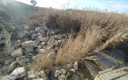 Vox exige que se paralice la reducción de agua para riego aprobada por la Junta y la CHG