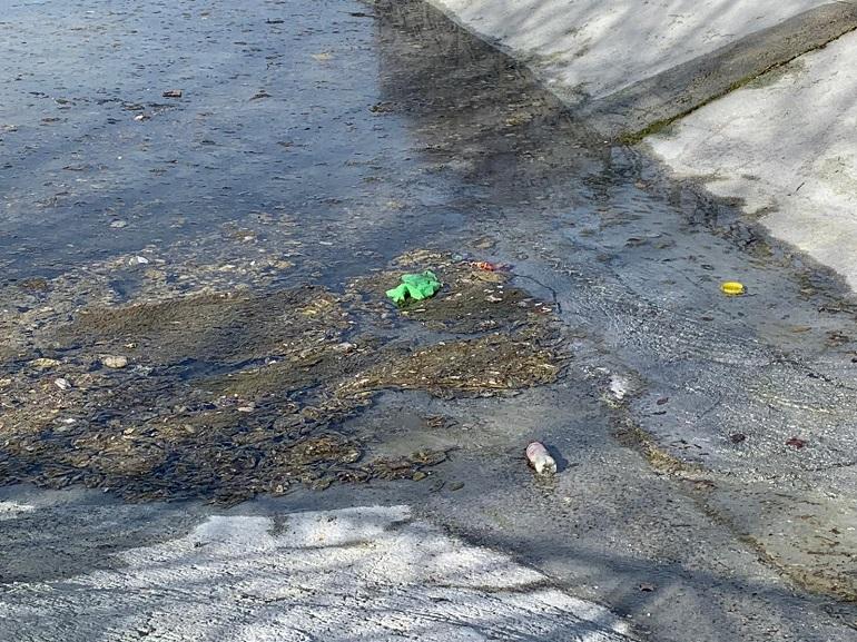 Ciudad Real Ineficiente limpieza del lago del Parque del Pilar para su llenado