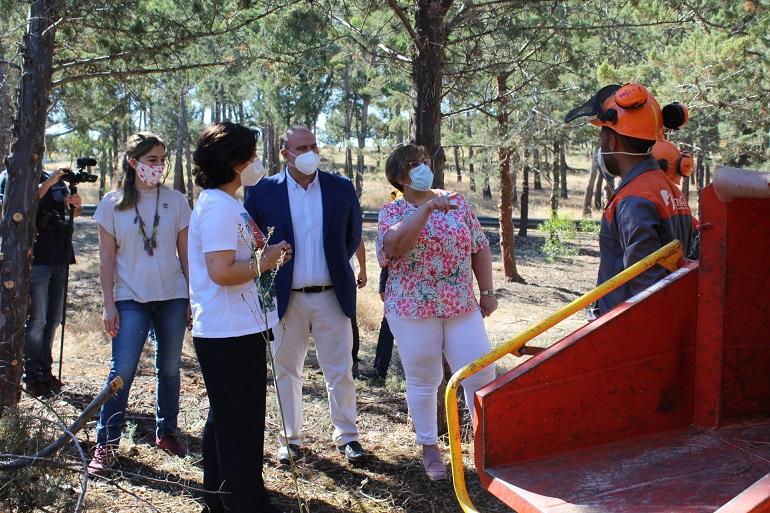 Ciudad Real Los profesionales de GEACAM han realizado trabajos de poda y limpieza sobre más de trece hectáreas del monte La Atalaya